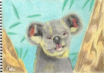 medium_le_koala.JPG