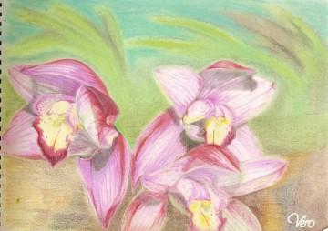 medium_les_orchidees.jpg