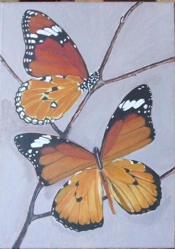 papillons10.jpg