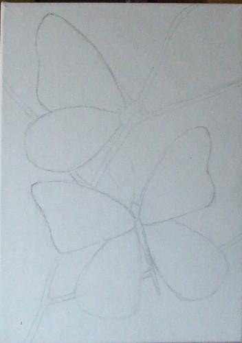 papillons1.jpg