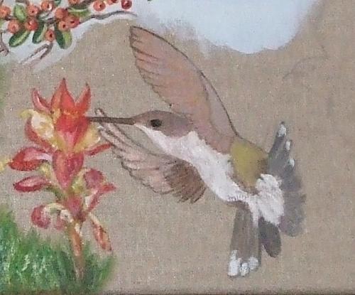 le colibri.jpg