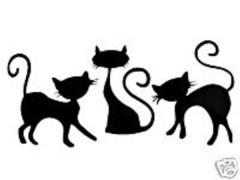 chats humoristiques.jpg