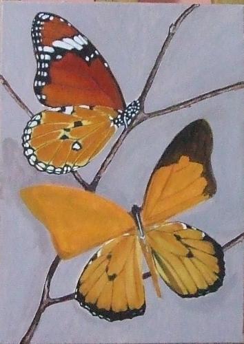 papillons8.jpg