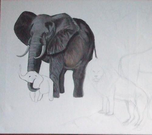 l'elephant.jpg