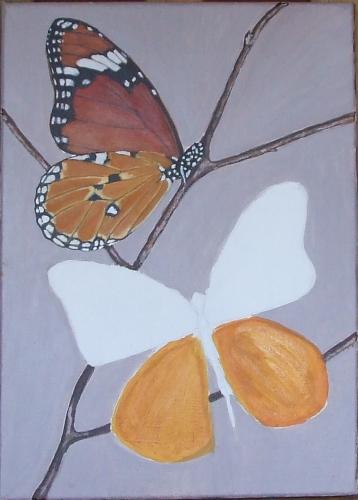 papillons6.jpg