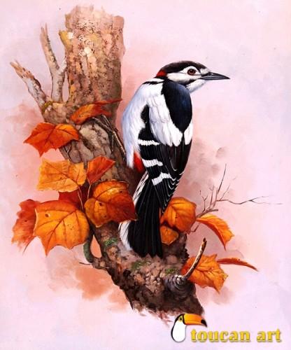 oiseau sur la branche.jpg