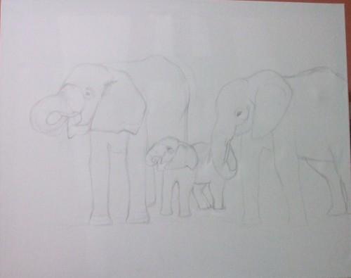 la famille elephants.jpg